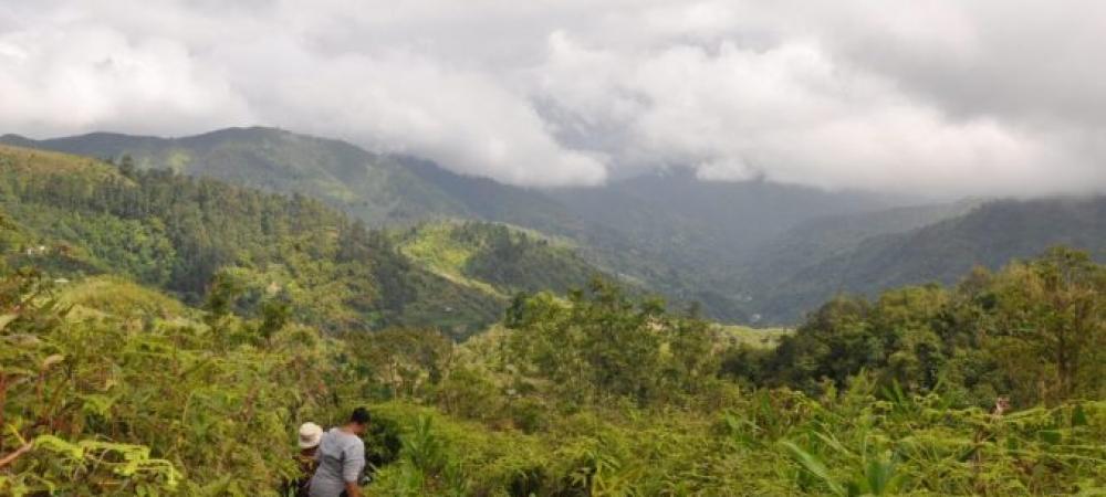 Green Hills BJCMNP